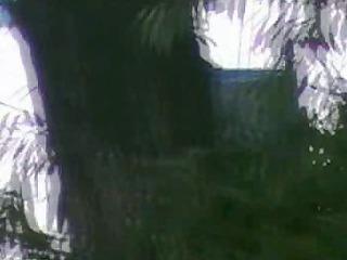 outdoor angels strut their stuff in al fresco